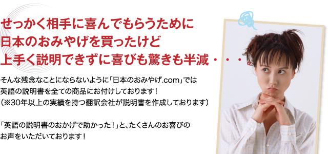 英語説明書とは?翻訳会社が作成した説明書を全商品にお付けします。